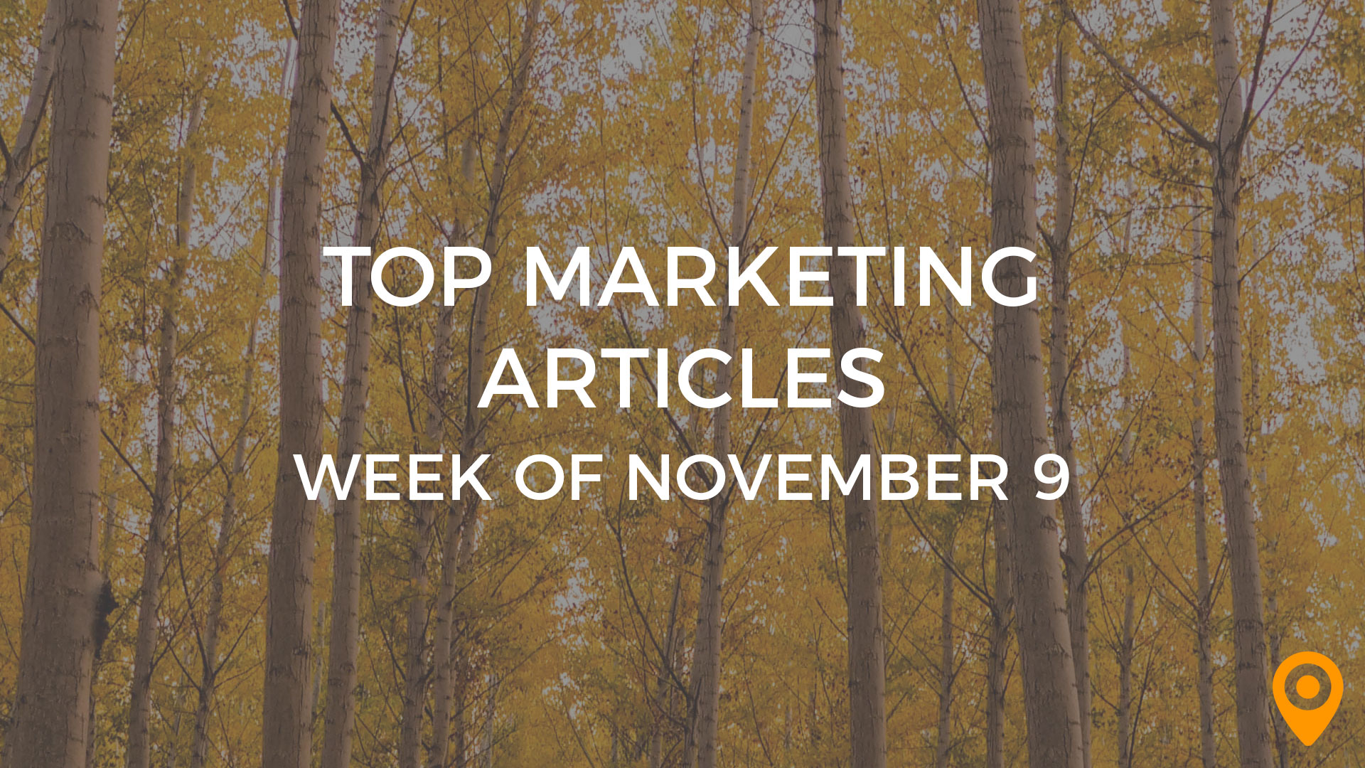Top Marketing Articles Week of Nov 9