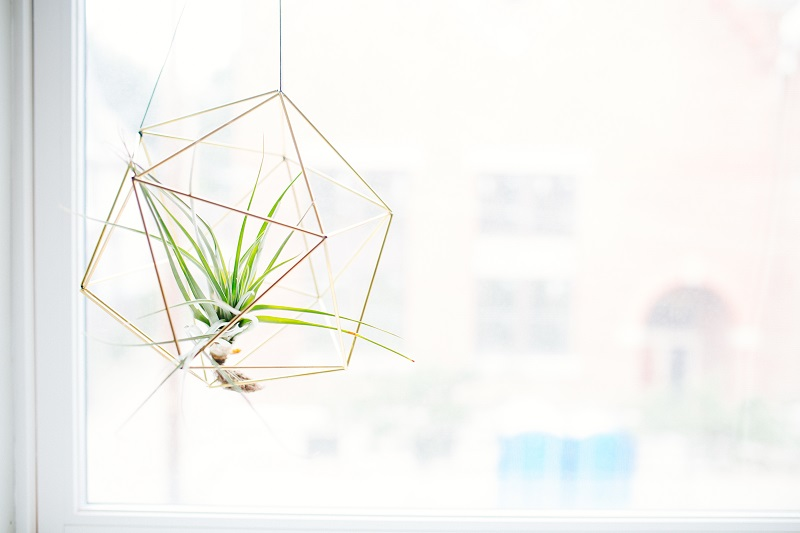 wire hanging planter
